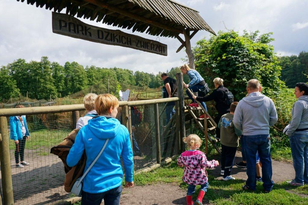 barierki Mazury z dziećmi - park dzikich zwierząt w Kadzidłowie Matka w kratkę