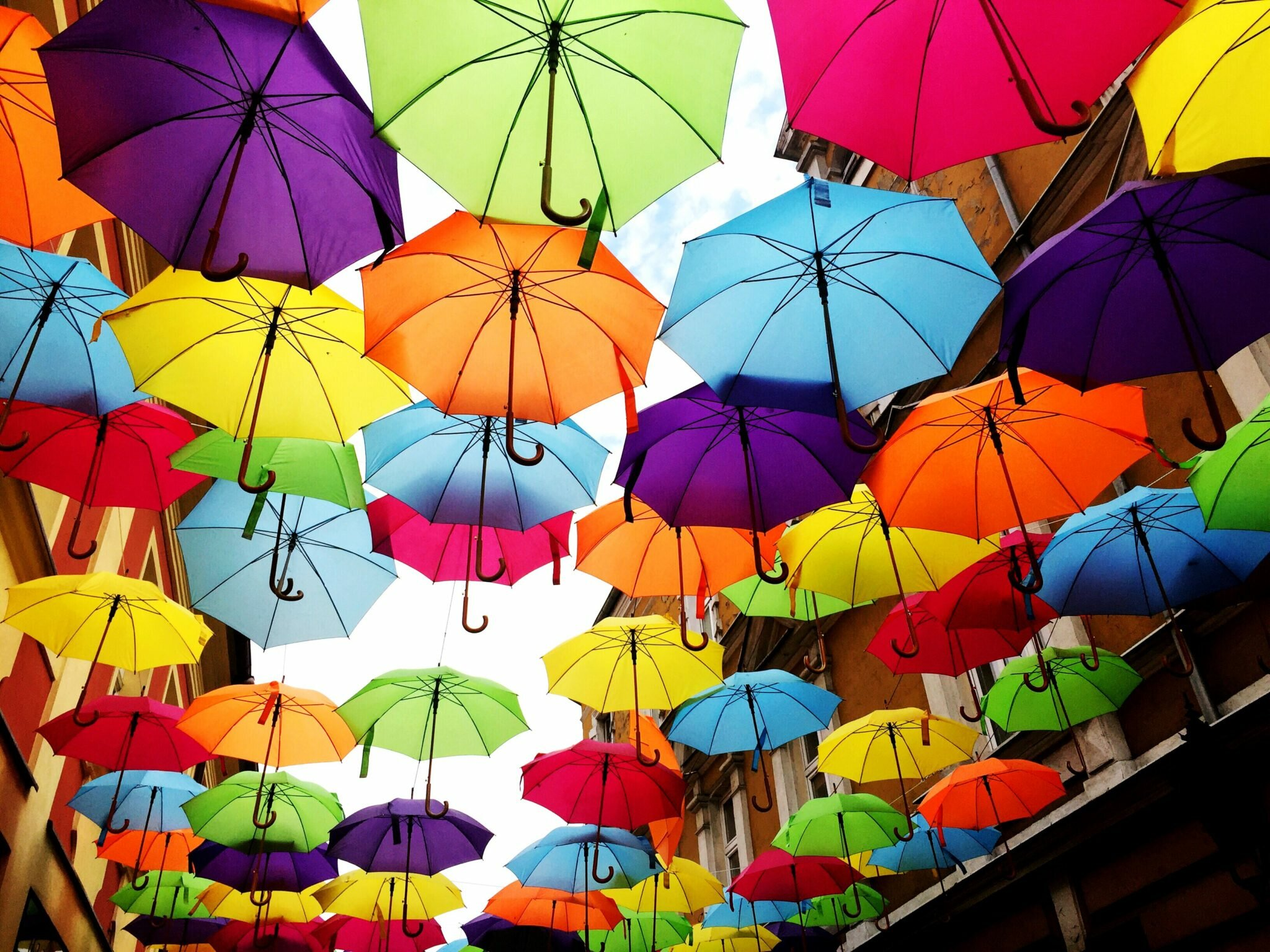 zdjęcie kolorowycparasolek podążanie za marzeniami